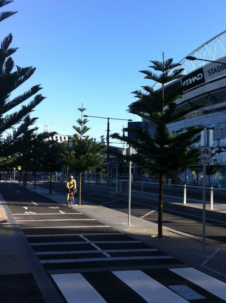 docklands melbourne transplanting trees - ETT - 4