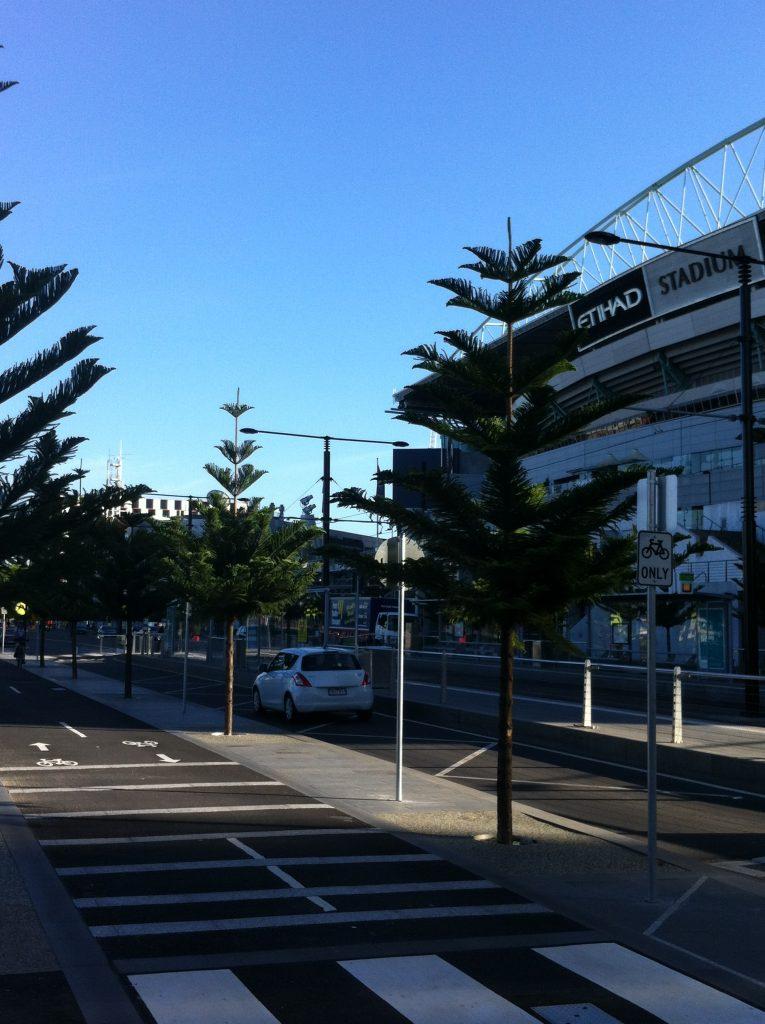 docklands melbourne transplanting trees - ETT - 5