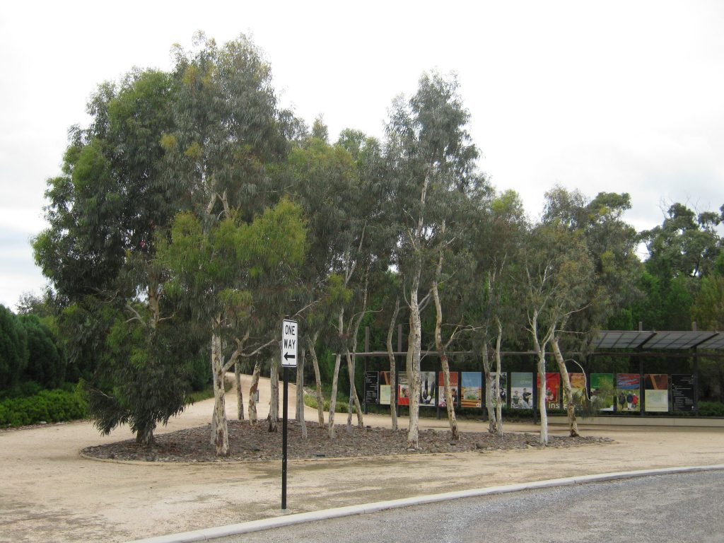 Royal Botanic Gardens Cranbourne - ETT - 1