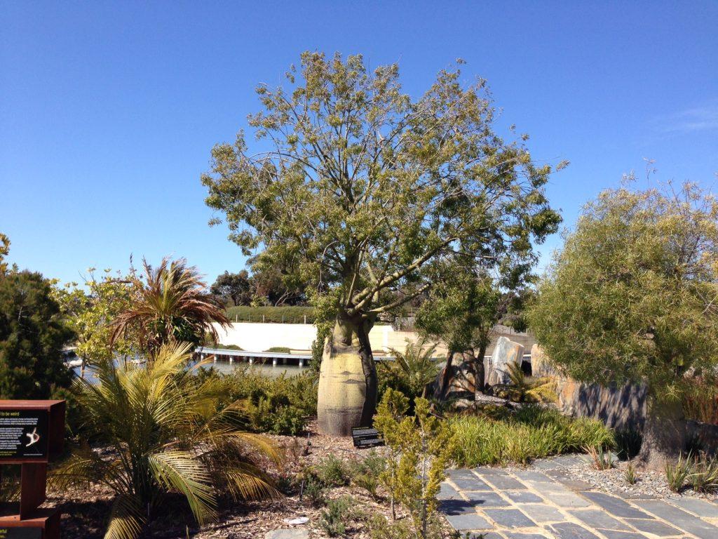 Royal Botanic Gardens Cranbourne - ETT - 14