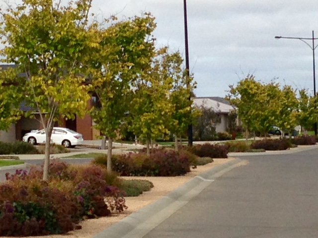 Warralily Estate, Geelong
